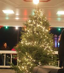 Christmas Tree Shop Warwick Ri by New Holiday Tradition In Knightsville Cranston Herald