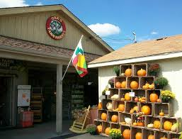 Pumpkin Patches In Shepherdstown Wv by The Top 10 Things To Do Near Berkeley Plaza Theatre 7 Martinsburg