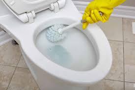 toilettenbürste test empfehlungen 04 21 einrichtungsradar