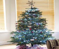 Sears Artificial Christmas Trees by Collection Easy Set Up Christmas Tree Photos Indoor U0026 Outdoor