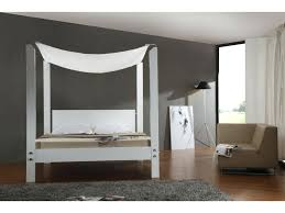 Queen Canopy Bed Curtains by Beds Canopy Beds Ideas Bed Curtain Images Of White Images Of