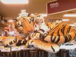Tiger Truck Stop Menu - SEONegativo.com Live Tiger At Truck Stop Grosse Tete La 180 Out At The In Louisiana Stops Two New Animals Frustrate Activists But Local Infamous Owner Acquires More Exotic Animals For Display Yes There Really Is A Free Tony The Criminal Shdown Wunc Camel Now Famed Truck Stop Outside Baton Rouge Owner Roundup Tiger Back Headlines Another Kelty Jobyronkuhnercom