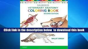 Animal Anatomy Coloring Book Audiobook Veterinary E Saunders