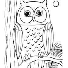 Cute Owl Coloring Pages AZ