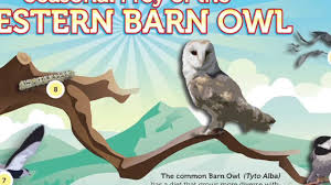 Owl Brand: The Barn Owl Food Supply - YouTube Attracting Barn Owls Natural Rodent Control Gardening Energy Transfer And The Carbon Cycle Worksheet Edplace Tritec Science Learning Community Projects Organisms Roles Loss In Food Chain Ecology Biology Lecture Slides Outreach Materials Owl Original Mixed Media Pating 6x8 Inches Bird Wild Decomposers Worksheets For Kids Archbold Biological Station 14 Images Of Wetland Coloring Pages Diagram 037_13d0568f9211773be9a9d4d89c530b2png