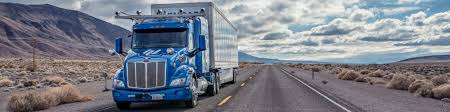 100 Truck Sleeper Cab Polar Storm