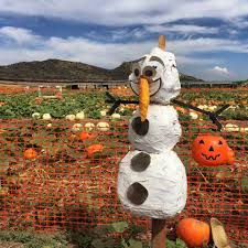 Tanaka Farms Pumpkin Patch Directions by Tanaka Farms Pumpkin Patch Oc Mom Blog