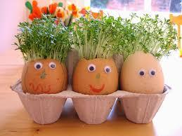 Eggshell Home Decoration Ideas