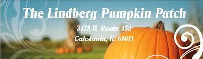 Southern Illinois Pumpkin Patches by Thegreatpumpkinpatch Com