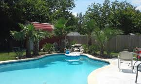 Palm Tree Types And Palm Tree Pictures From Palm Trees Of Houston Front Yard Landscaping With Palm Trees Faba Amys Office Photo Page Hgtv Design Ideas Backyard Designs Wood Above Concrete Wall And Outdoor Garden Exciting Tropical Pools Small Green Grasses Maintenance Backyards Cozy Plant Of The Week Florida Cstruction Landscape Palm Trees In Landscape Bing Images Horticulturejardinage Tree Types And Pictures From Of Houston Planting Sylvester Date Our Red Ostelinda Southern California History Species Guide Install