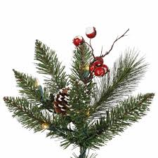 3ft Pre Lit Berry Christmas Tree by Amazon Com Vickerman Snow Tip Pine Berry Tree With 20 Clear