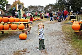 Best Pumpkin Patch Tallahassee by Set This Circus Down October 2014