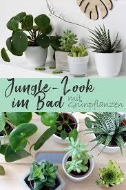 jungle look im badezimmer mit grünpflanzen mit pilea