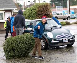 West Seattle Christmas Tree Disposal by Photos Some Weekend Scenes Of Local Kids Recycling Christmas