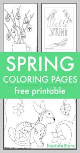 Spring Coloring Sheets Printables For Children