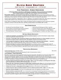 Executive Resume Sample For Hr Vp1 - PDF Format | E-database.org