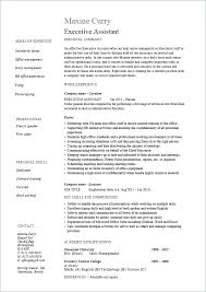 Typing Skills Resume Executive Assistant Rh Pinktours Co Basic Examples Simple