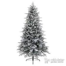 Christmas Tree 10ft by Mid Ulster Garden Centre Quality Stockist Everlands Christmas Trees