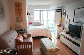 Studio Design Ideas 400 Square Feet Apartment