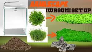 Iwagumi Aquascaping Set Up - Aquascape Einrichten - YouTube How To Set Up An African Cichlid Tank Step By Guide Youtube Aquascaping The Art Of The Planted Aquarium 2013 Nano Pt1 Best 25 Ideas On Pinterest Httpwwwrebellcomimagesaquascaping 430 Best Freshwater Aqua Scape Images Aquascape Equipment Setup Ideas Cool Up 17 About Fish Process 4ft Cave Ridgeline Aquascape A Planted Tank Hidden Forest New Directly After Setting When Dreams Come True