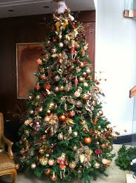 Longest Lasting Christmas Tree by 11 Best Christmas Tree Tips Keeping Your Tree Alive U0026 Fresh Images