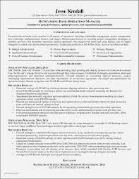 Sample Resume For Credit Manager In India Elegant Inspirational Samples