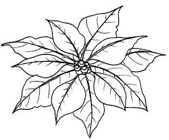Couple Of Poinsettia Flower Leaves Coloring Page