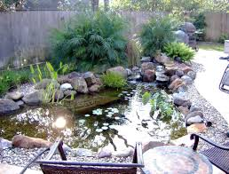 Ecosystem Koi Pond Installation-Austin|Central|Texas|TX - Texas ... Garnedgingsteishplantsforpond Outdoor Decor Backyard With A Large Fish Pond And Then Rock Backyard 8 Small Ideas Front Yard Ponds Backyards Wonderful How To Build For Koi Loving And Caring For Our Poofing The Pillows Project Photos Ideasnhchester Rockingham In Large Bed Scanners Patio Heater Flame Tube Beautiful Classical Design Garden Well Cared Indoor Waterfall Eadda Lawn Style Feat Artificial 18 Best Diy Designs 2017