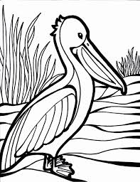 Bird Coloring Pages Printable Archives Throughout Free Birds
