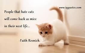 cat quotes cat quotes cat quote cat quotations cat quotes