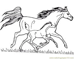 Printable Detailed Coloring Pages Horses