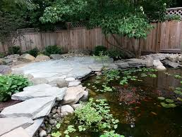 Aquascape Patio Pond Canada by Patio Koi Pond Kits Home Design Ideas