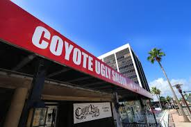 Coyote Ugly Saloon Set To Open In Daytona Beach - News - Daytona ... Perfect For Large Families Groups Private Pool Short Walk To Destin Florida Great American Things Jennifer Gauls New Book Who Do You Knowreally Is An 25 Best What To In Baltimore Images On Pinterest Crystal Beach Condo Rentals Sealoft 104 Gorgeous Spacious 4 Bdrm Sleeps 14 Clos Vrbo Cottage Pet Friendly Peace O Mind Formerly Good Day Sunshine Houses Rent