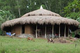 Roots Of Health Builds The First Mud House In Palawan Philippines