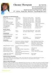 Acting Resume Template For Microsoft Word Luxury 28