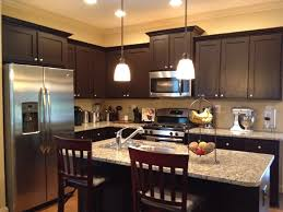 Painted Espresso Kitchen Cabinets New Home Designs The Great