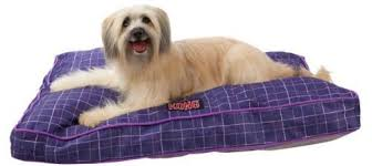 durable dog beds we pick 5 of the best