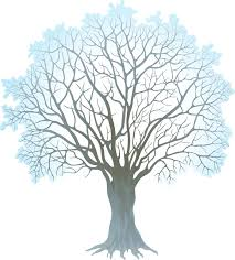12 best photos of winter tree clipart
