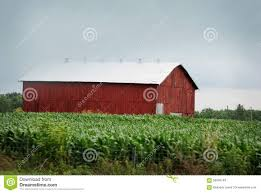 A Large Red Barn With White Roof In Rural Kentucky. Stock Image ... Red Barn Green Roof Blue Sky Stock Photo Image 58492074 What Color Is This Bay Packers Barn Minnesota Prairie Roots Pfun Tx Long Bigstock With Tin Photos A Stately Mikki Senkarik At Outlook Farm Wedding Maine Boston 1097 Best Old Barns Images On Pinterest Country Barns Photograph The Palouse Or Anywhere Really Tips From Pros Vermont Weddings 37654909
