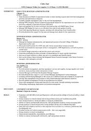 Business Administrator Resume Samples | Velvet Jobs Unique Administrative Assistant Skills For Resume Atclgrain Sample Cover Letter For Assistant Valid New Position Wattweilerorg Examples Of Luxury Musical Theatre Filename Contesting Wiki Verbal Communication Image Medical List Best Job Timhangtotnet Example Writing Tips Genius
