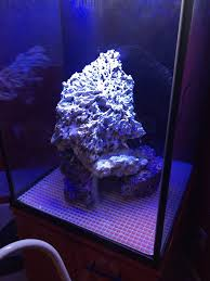 Aquascaping For 75 Gallon Cube | REEF2REEF Saltwater And Reef ... Is This Aquascape Ok Aquarium Advice Forum Community Reefcleaners Rock Aquascaping Contest Live Rocks In Your Saltwater Post Your Modern Aquascape Reef Central Online There A Science To Live Rock Sanctuary 90 Gallon Build Update 9 Youtube Page 3 The Tank Show Skills 16 How Care What Makes Great Large Custom Living Coral Aquariums Nyc