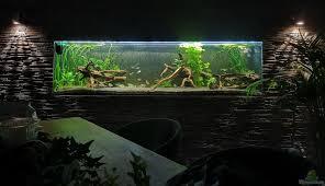 aquarium stefan heins 26445 mein 1050er