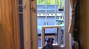 Doggie Door Insert For Patio Door by Pet Patio Door Canada Furniture Cheap And Unique Home Sets