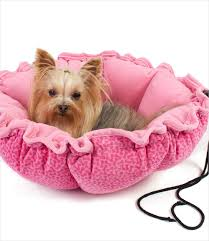Cuddler Dog Bed by Choosing The Best Beds For Yorkie Dogs Yorkie Savvy