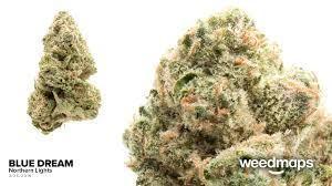 Northern Lights Cannabis Co Denver Denver CO Reviews Menu