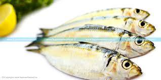 100 Mathi Sardine Supreme SeafoodSupreme Seafood