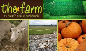 Swan Farms Snohomish Pumpkin Patch by The Farm At Swan U0027s Trail In Snohomish Washington Groupon