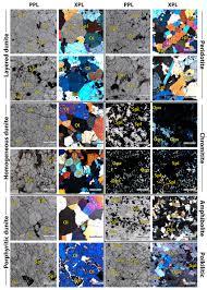 Representative polarized light microscopy photographs of the