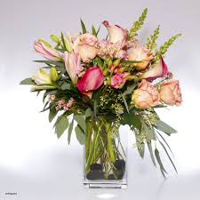 1800 Flowers Coupon Cute Ftd Canada Promo Code Line Discounts Top Sales And Coupons For Mothers Day 2019 Winner Sportsbook Coupon Code Online Coupons Uk Norman Love Papa John Coupon Flower Shoppingcom Bed Bath Beyond Total Spirit Cheerleading Ftd September 2018 Second Hand Car Deals With Free Sears Codes 2016 Kanita Hot Springs Oregon Juno 20 Off Pacsun Promo Codes Deals Groupon Celebrate Mom Discounts Freebies Ftd 50 Discount Off December Company