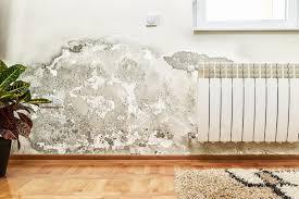 die ideale luftfeuchtigkeit in wohnräumen